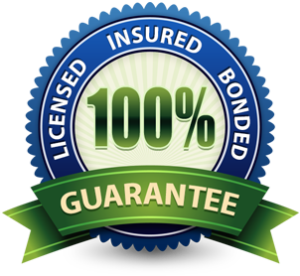 Licensed Insured Bonded Badge 300x276 1