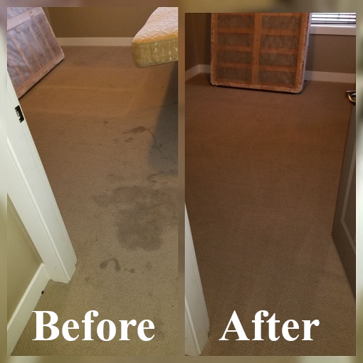 Carpet cleaner 510x510 1